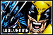 Characters: Wolverine