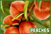 Fruits & Vegetables: Peaches